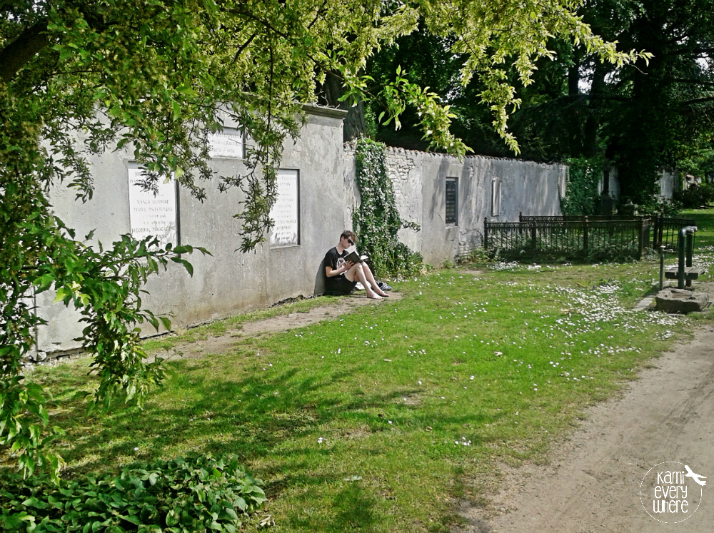 kopenhaga cmentarz norrebro